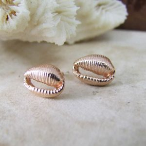 rose cowrie